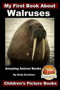 My First Book about Walruses - Amazing Animal Books - Children's  by Davidson Mo
