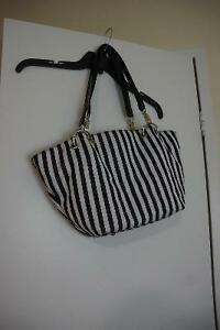 Black & White striped purse