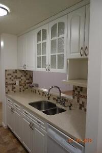 1 bedroom apartment condo close to downtown