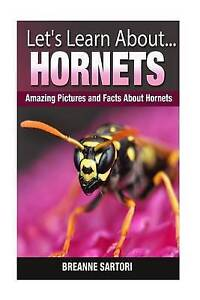 Hornets: Amazing Pictures and Facts about Hornets by Sartori, Breanne -Paperback