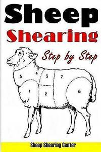 NEW Sheep Shearing: How to shear a sheep step by step with no step skipped