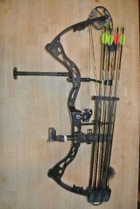 Elite gt500 compound bow
