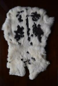 GENUINE NATURAL RABBIT SKIN FUR PELTS [X3] $25/EACH Kingston Kingston Area image 3