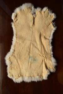 GENUINE NATURAL RABBIT SKIN FUR PELTS [X3] $25/EACH Kingston Kingston Area image 4