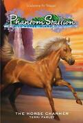 Phantom Stallion Lot