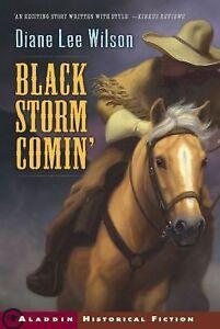Black-Storm-Comin-Diane-Lee-Wilson-Paperback