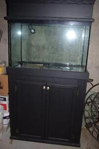 Going out of fish hobby sale