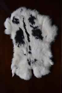 GENUINE NATURAL RABBIT SKIN FUR PELTS [X3] $25/EACH Kingston Kingston Area image 1