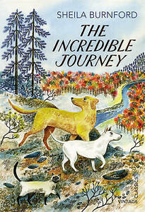 The-Incredible-Journey-by-Sheila-Burnford-Paperback-2013