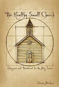 The Healthy Small Church: Diagnosis and Treatment for the Big Issues-ExLibrary