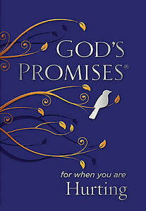 God's Promises for When You are Hurting, Countryman, Jack, New Book