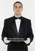 We are in need of a house BUTLER.
