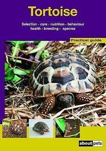 Tortoise  BOOK NEW
