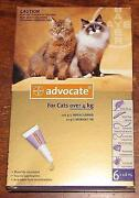 Advocate Cats