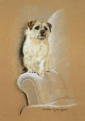 Norfolk Terrier Limited Ed Art Print The Armchair Warrior by Debbie Gillingham*