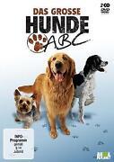 Hunde DVD
