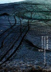 In the Wake: Japanese Photographers Respond to 3/11 by Anne E. Havinga, Anne Nis