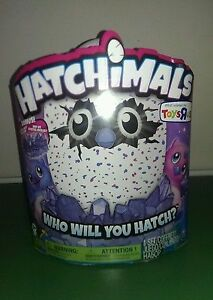 Owlicorn Hatchimal For Sale