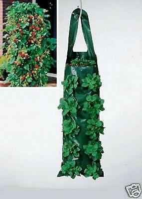 Hanging flower bags pots window boxes baskets ebay