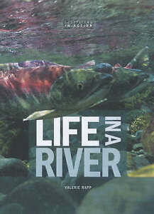 New Life in a River Ecosystems in Action Rapp Valerie Book - Hereford, United Kingdom - New Life in a River Ecosystems in Action Rapp Valerie Book - Hereford, United Kingdom