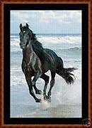 Horse Cross Stitch