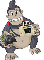 NICE, KIND GORILLA WITH A CAMERA IS LOOKING FOR A FEMALE MODEL.