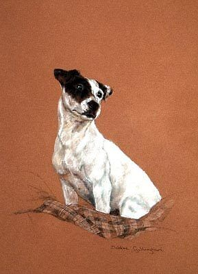 Jack Russell Limited Edition Art Print Thoughtful by Debbie Gillingham*