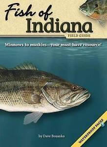 USED (GD) Fish of Indiana Field Guide (Fish Identification Guides) by Dave Bosan