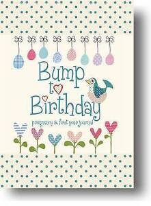 Bump to Birthday, Pregnancy & First Year Journal Baby shower gift record book