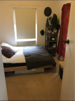 Beachfront Room to Rent!