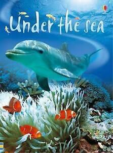 Under the Sea, Fiona Patchett