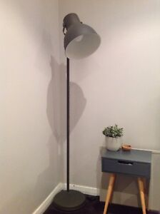 Floor Lamp New Lambton Newcastle Area Preview