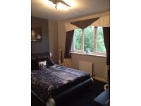 Luxury Home Double Rooms Available