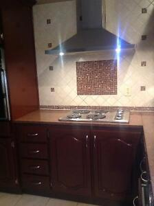 Solid ok kitchen cabinets + granite counter tops