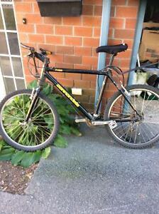Cannon dale bike