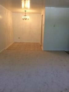 Large 3 BR Apt. With New Flooring Throughout in Clayton Park
