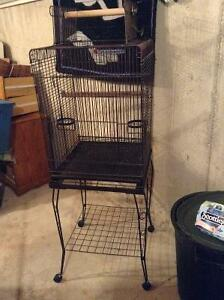 cockatiel bird cage with stand