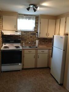 One Bedroom Apartment w/ Washer/Dryer, Free Wifi, Private Drive