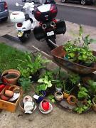 Garage Sale - Furniture, Clothes, Books, Plants, Bric Brac. Marrickville Marrickville Area Preview