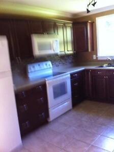 House for Rent 20 minutes from Long Harbour St. John's Newfoundland image 2