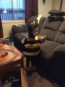 Adorable little Bumblebee Costume size 12 months