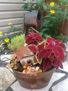 Fairy Gardens  by Linda