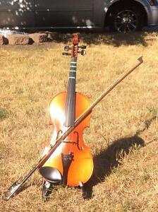 Student violin kit