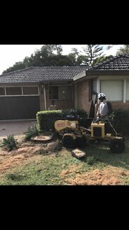 Toddy's Stump Grinding