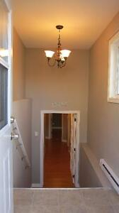Very Clean 2 Bedrooms basement suite in 5 year old house- Goulds