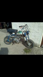 Wanted: Honda mini bike