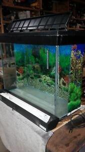 40 Gallon Fish Aquarium, Enhein Pump, Accessories