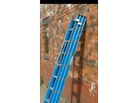 Trippel Trade Fibre Glass Ladder