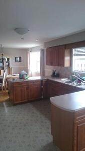 Kitchen cabinets with counter tops