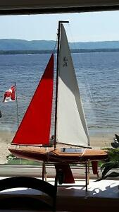 Amazing full remote sailboat